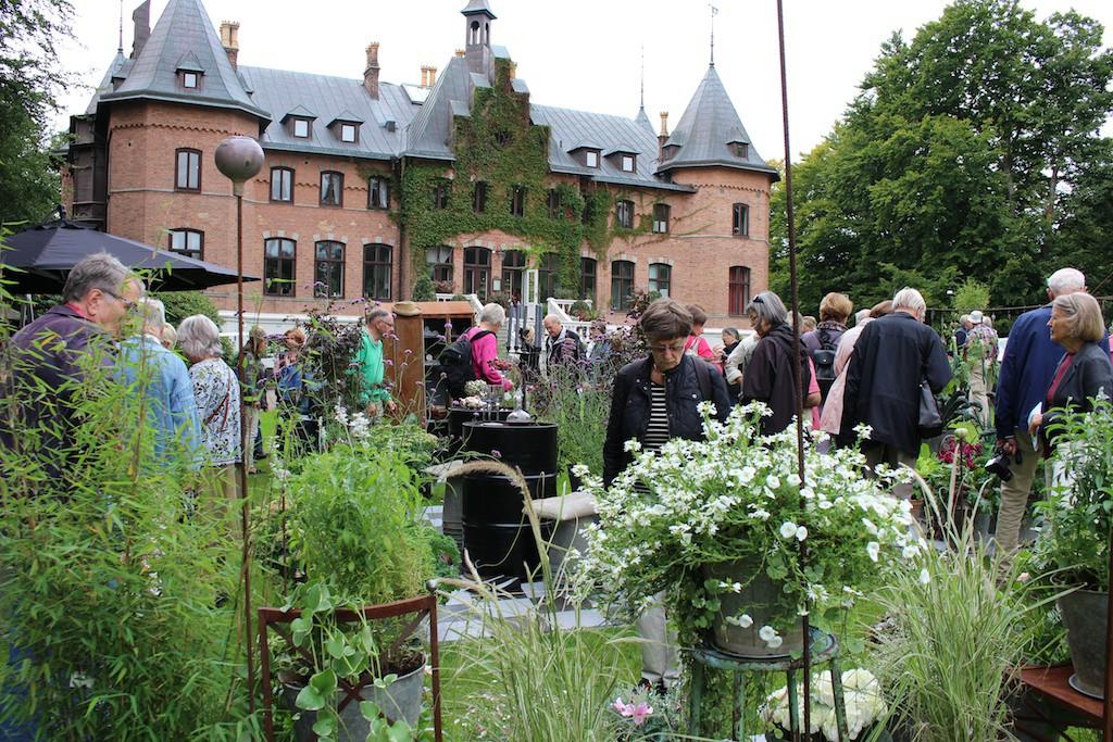 Besöksträdgårdar Sofiero slottsträdgård