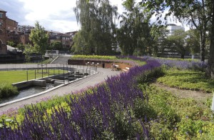 Norrköping stad i sommarskrud