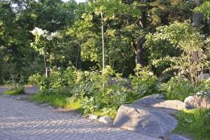 Liseberg nöjespark, Göteborg