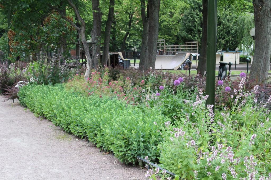 Studerar man parkens planteringar noggranthittar man guldkorn som man inte ser så ofta i offentliga sammanhang, som till exempel brinnande kärlek och den gracila rutan!