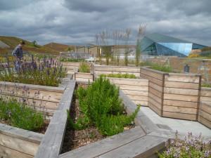 Besöksträdgårdar - Emporias takpark