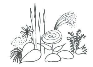 Färg och formlära - Perenner former