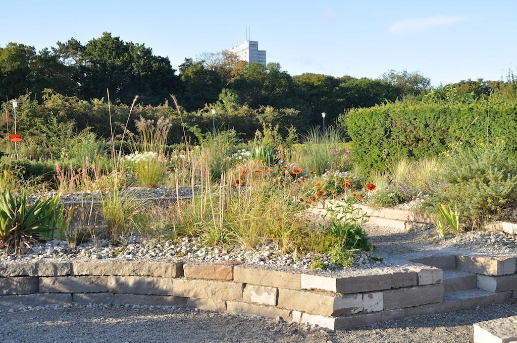 """Tematrädgårdarna förändras mer eller mindre varje år. Här är en på temat """"Torrt och frodigt"""" som visar ett stenlandskap som kan tyckas vara torftigt med som har fullt med blommande växter."""