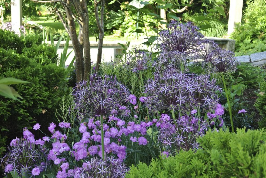 Parken bjuder på en enorm blomsterprakt från lökar och perenner. Växternas blomperiod avlöser varandra för en lång säsong och under höst och vinter står fröställningar kvar och skapar struktur och liv i parken.
