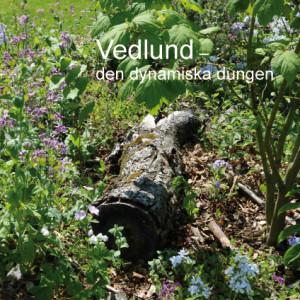2013 Vedlund- Den dynamiska dungen Designad av Peter Gaunitz